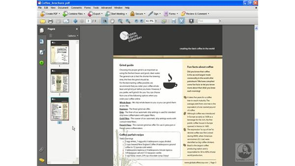 Inserting and deleting pages: Acrobat 8 Professional Essential Training