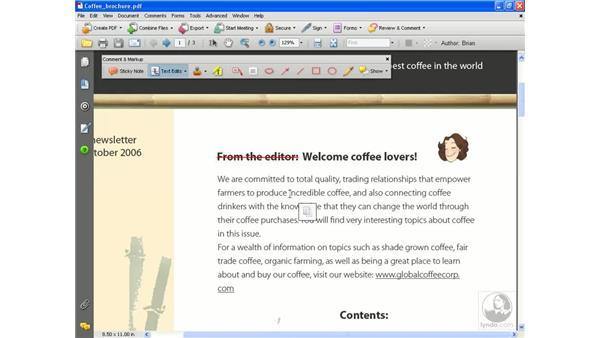 Text editing tools: Acrobat 8 Professional Essential Training
