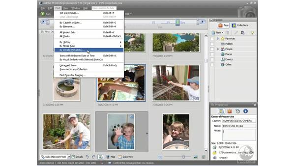 : Photoshop Elements 5 Essential Training