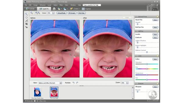 Temperature and Tint: Photoshop Elements 5 Essential Training