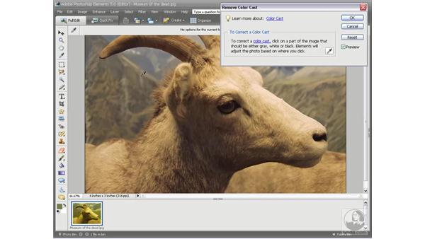 Eliminating a color cast: Photoshop Elements 5 Essential Training