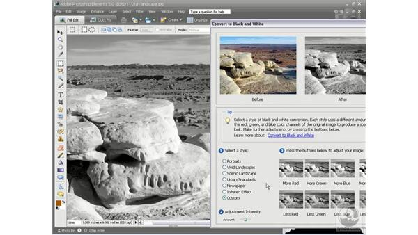 Converting to black and white: Photoshop Elements 5 Essential Training