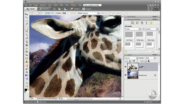 Moving a selection onto a different background: Photoshop Elements 5 Essential Training