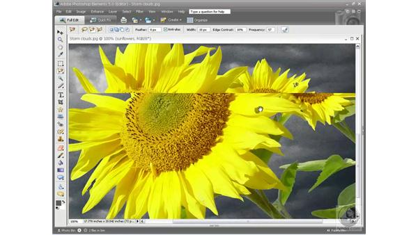 Fixing edges: Photoshop Elements 5 Essential Training
