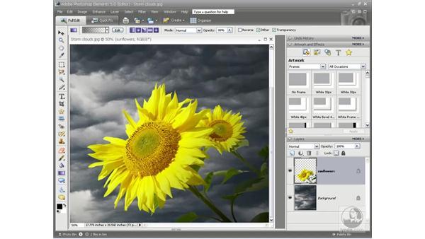 Photorealistic shading techniques: Photoshop Elements 5 Essential Training