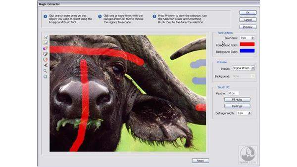 Extracting an image: Photoshop Elements 5 Essential Training
