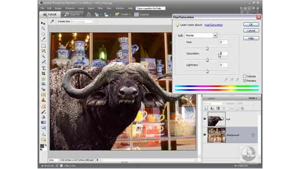 The final composition: Photoshop Elements 5 Essential Training