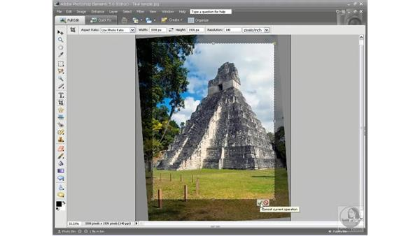 Using the Crop tool: Photoshop Elements 5 Essential Training