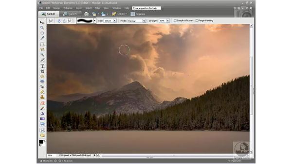 Using the Focus tools: Photoshop Elements 5 Essential Training
