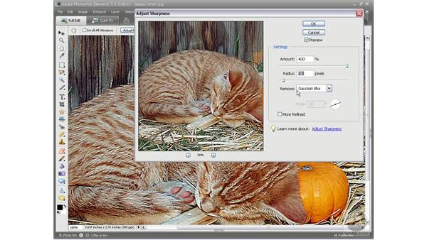 Sharpening an image: Photoshop Elements 5 Essential Training