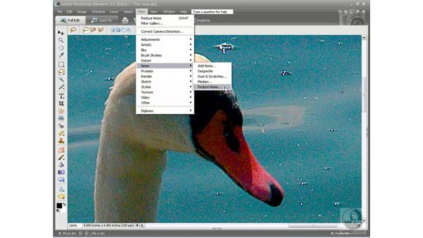 Reducing digital noise: Photoshop Elements 5 Essential Training