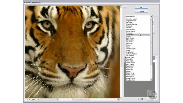 Using the Filter Gallery: Photoshop Elements 5 Essential Training