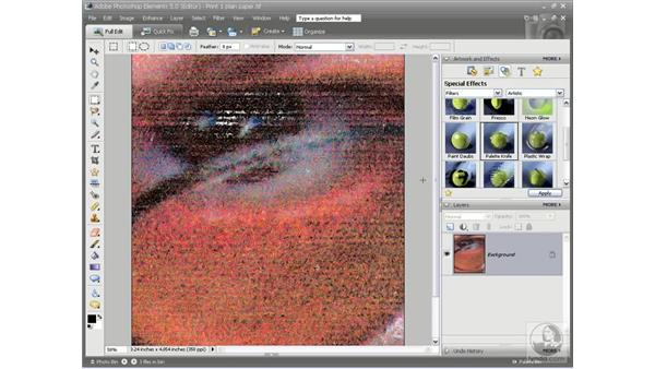 The price of quality: Photoshop Elements 5 Essential Training