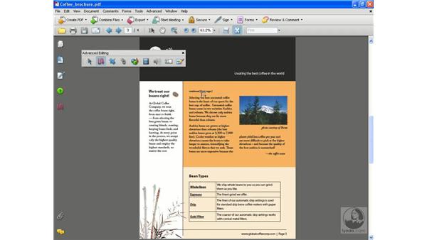 Creating articles: Acrobat 8 Professional Beyond the Basics
