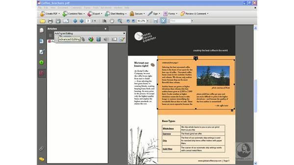 Editing articles: Acrobat 8 Professional Beyond the Basics
