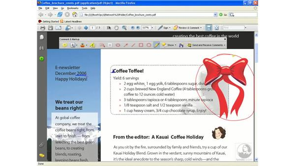 Participating in a browser-based review: Acrobat 8 Professional Beyond the Basics