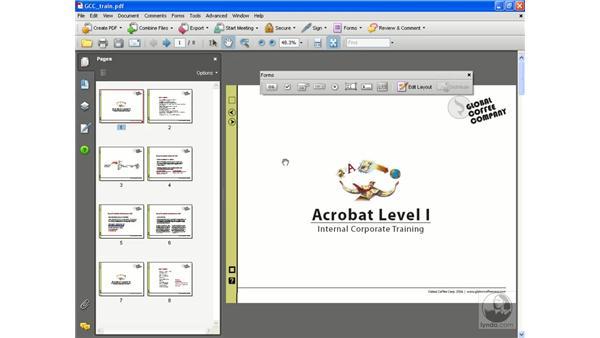 Setting Full-screen mode: Acrobat 8 Professional Beyond the Basics