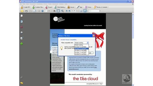 Reducing file size vs. using PDF Optimizer: Acrobat 8 Professional Beyond the Basics