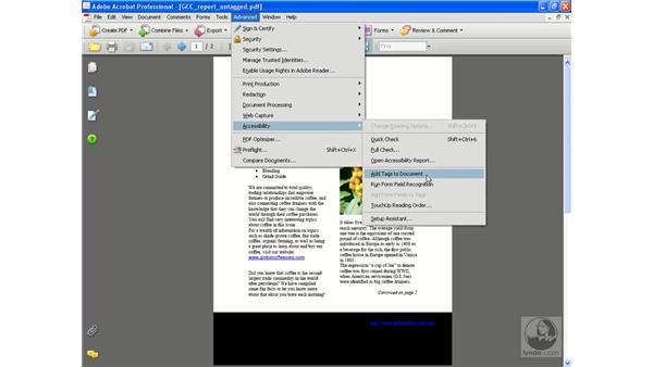 Creating a tagged PDF: Acrobat 8 Professional Beyond the Basics