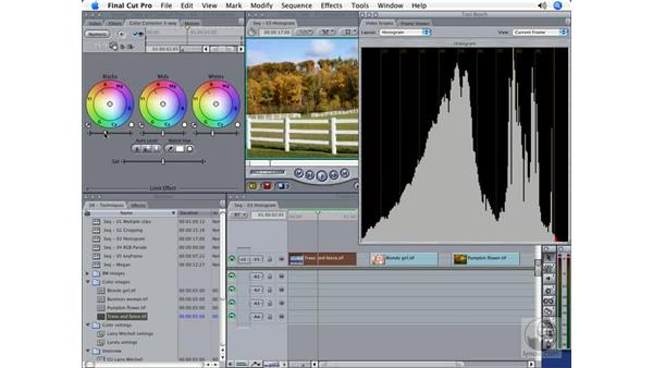 The Histogram scope: Final Cut Pro 5 Color Correction