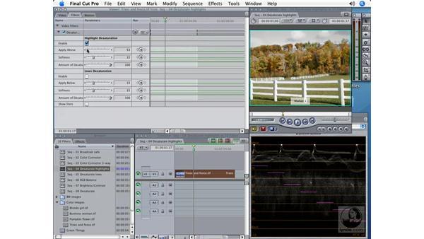 Desaturate Highlights: Final Cut Pro 5 Color Correction