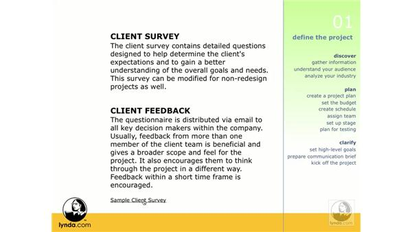 Building a client survey: Web ReDesign: Strategies for Success