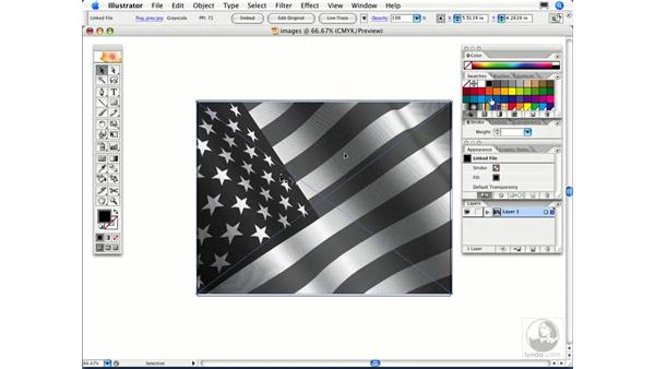 How can I colorize an image to create a monotone?: Illustrator CS2 FAQs