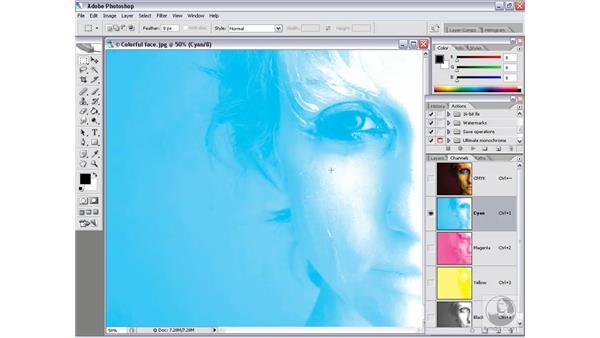 CMYK plates: Photoshop CS2 Channels & Masks