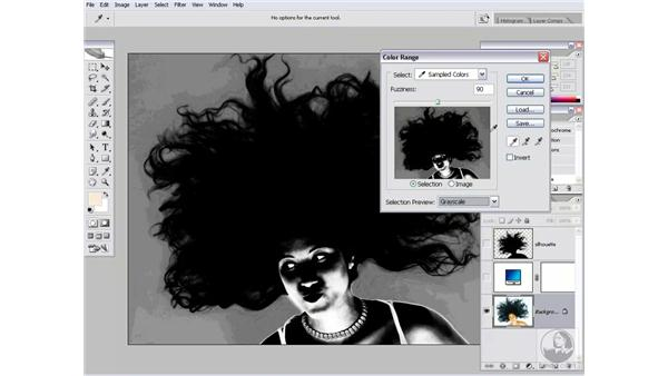The Silhouette effect: Photoshop CS2 Channels & Masks