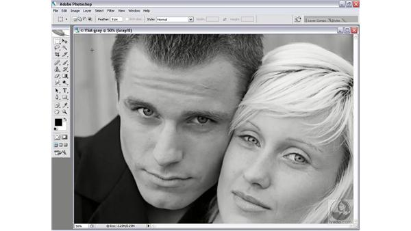 Industry-standard grayscale: Photoshop CS2 Channels & Masks