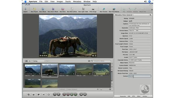 Adding new fields to the Metadata view: Aperture 1.5 Beyond the Basics