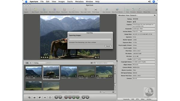 Exporting metadata with Version: Aperture 1.5 Beyond the Basics