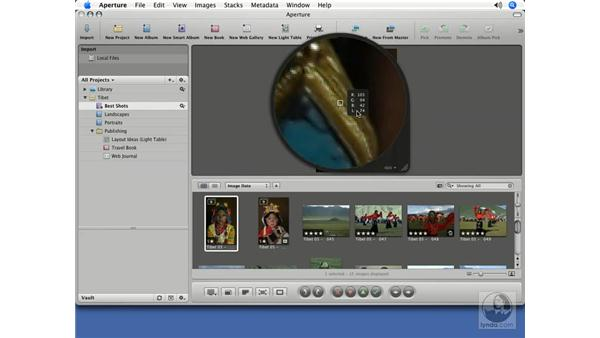 Showing color values in the Loupe: Aperture 1.5 Beyond the Basics