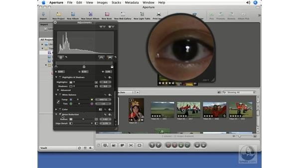 Using the Loupe for noise reduction and sharpening: Aperture 1.5 Beyond the Basics
