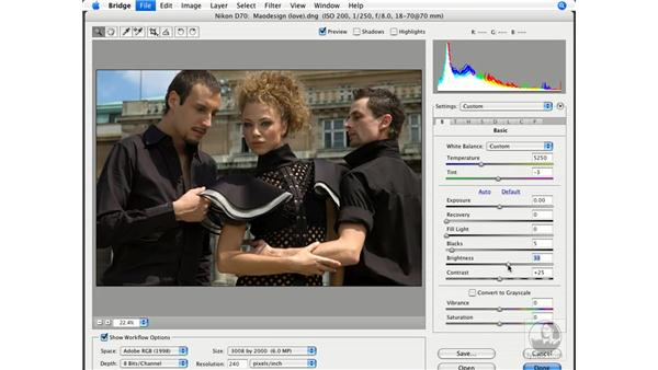 Overview of Camera Raw 4.0: Photoshop CS3 New Features