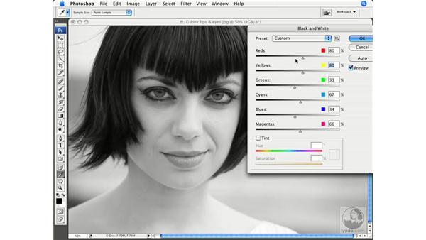 The Black & White command: Photoshop CS3 New Features