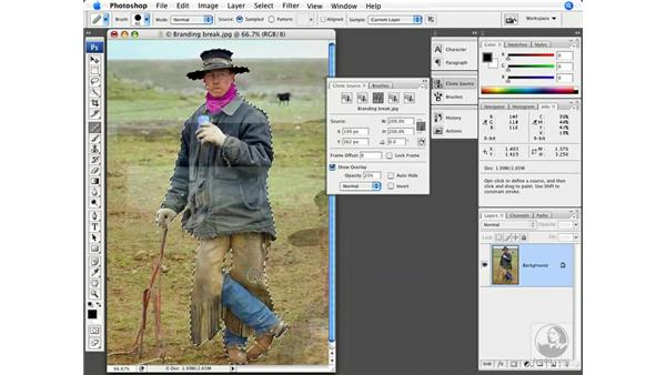 The Clone Source palette: Photoshop CS3 New Features