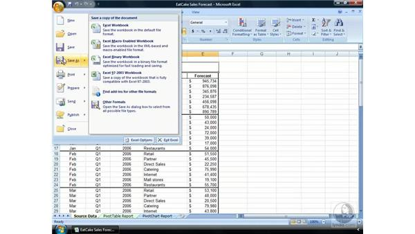 The Microsoft Office Button: Excel 2007 Essential Training