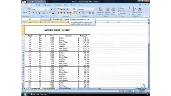 Alignment of data: Excel 2007 Essential Training