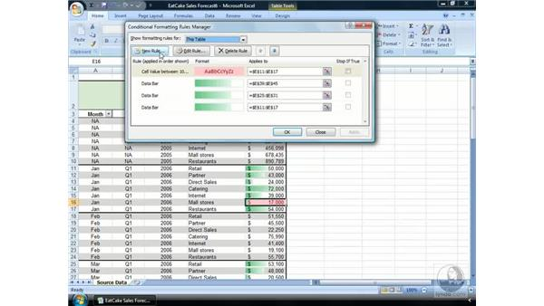 Managing Conditional Formatting rule preferences: Excel 2007 Essential Training