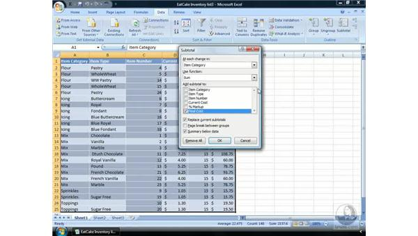 Creating a summary report: Excel 2007 Essential Training