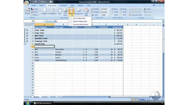 Page Breaks: Excel 2007 Essential Training
