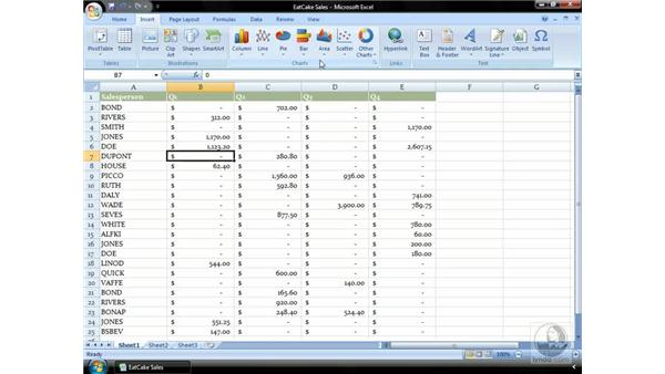 Creating your chart: Excel 2007 Essential Training