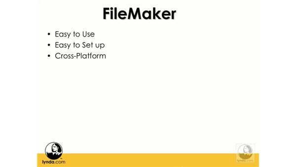 Advantages of FileMaker: Flash 8 and FileMaker 8.5 Integration
