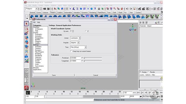 Customizing the interface: Maya 8 Essential Training