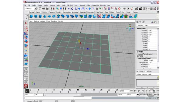 NURBS Primitives : Maya 8 Essential Training
