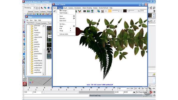 The Paint FX window : Maya 8 Essential Training