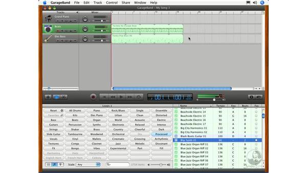 Loop-based music production software: Digital Audio Principles