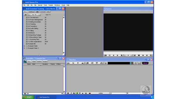 The Project window: Avid Xpress Pro 5.5 Essential Editing