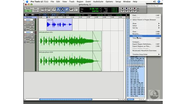 Cleaning up your project: Pro Tools 7 LE Essential Training